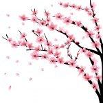 Cherry Blossom Mural Ideas